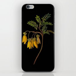 Sophora Tetraptera Mary Delany Floral Paper Collage Delicate Vintage Flowers iPhone Skin