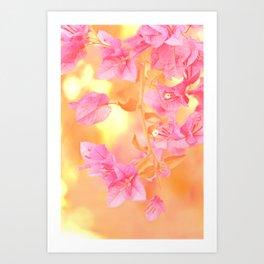 Sunny Bougainville 4 Art Print
