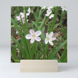 Mini Purple Wild Flower Mini Art Print
