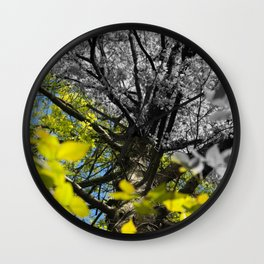 Two Colors Wall Clock