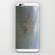 Escaped Cranberries iPhone & iPod Skin