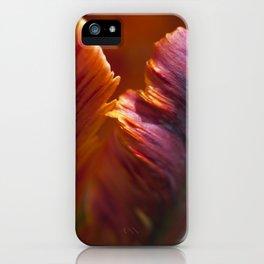 Parrot Tulip Petal iPhone Case