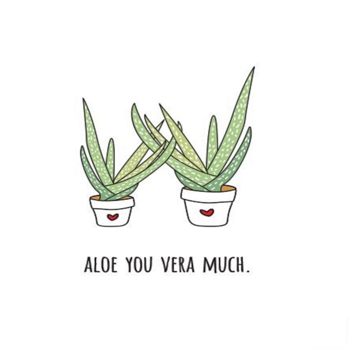 Aloe You Very Much Comforters