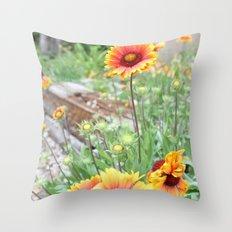 Blanket flowers Throw Pillow
