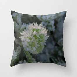 Frost crystals Throw Pillow