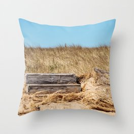 Provincetown (7 of 16) Throw Pillow
