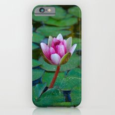 Water Lily 1 Slim Case iPhone 6s
