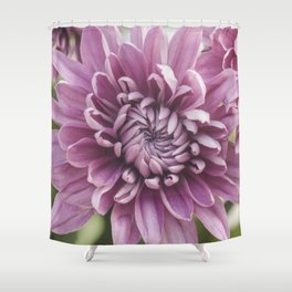 Soft Pink Mum, Nature Photography, Flower, Floral Print, Flower Print, Nature Print, Macro Art Shower Curtain