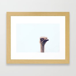 Struts Framed Art Print