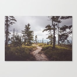 Over the mountains and through the woods Canvas Print