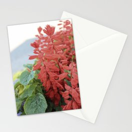 Red Flowers in Vintage Marquette Stationery Cards