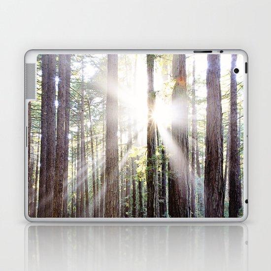 Sunburst Through the Redwoods Laptop & iPad Skin