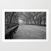 Central Park, NY Art Print