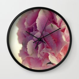 Close up of blooming pink hydrangea flower. Wall Clock