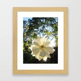 Moon Flower Framed Art Print