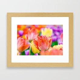 Magic of spring Framed Art Print