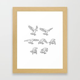 Bald Eagle Flying Drawing Collection Set Framed Art Print