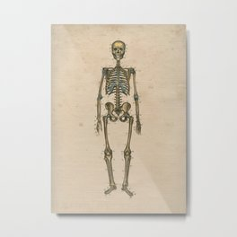 Human Skeleton Anatomy 1841 Print Metal Print