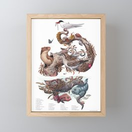 Driftwood (with labels) Framed Mini Art Print