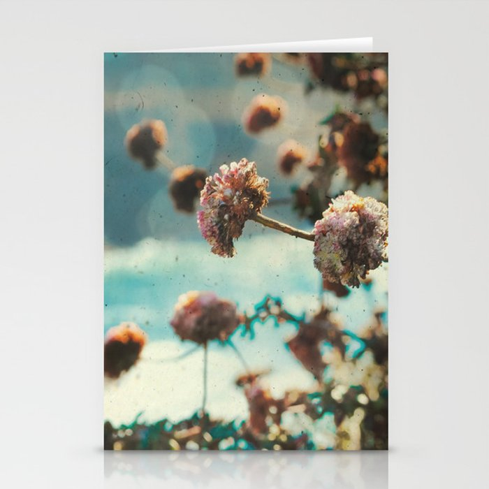 Big Sur - Kiss the Light Stationery Cards