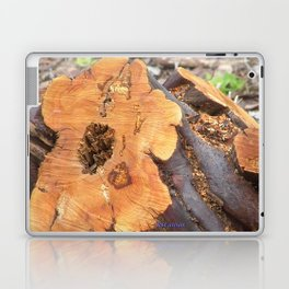 TEXTURES - Manzanita in Drought Conditions #2 Laptop & iPad Skin