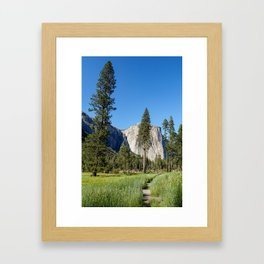 Yosemite Views Framed Art Print