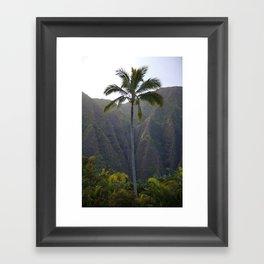 Paradise Palm tree Framed Art Print