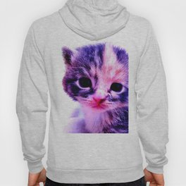 Blue Pink Cute Little Cat Hoody