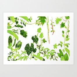 Rainforest Foliage Art Print