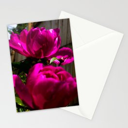 Backyard Peonies Stationery Cards