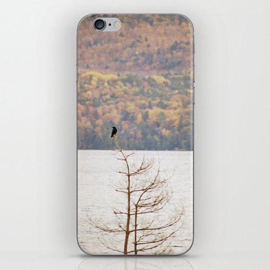 Fall Bird iPhone & iPod Skin