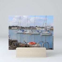 Summer Isle of Whithorn, Galloway, Scotland Mini Art Print