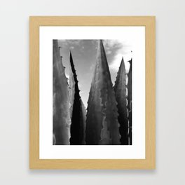 Agave Towers Framed Art Print