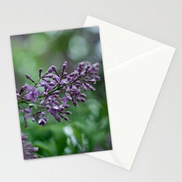 Rainkissed Lilacs Stationery Cards