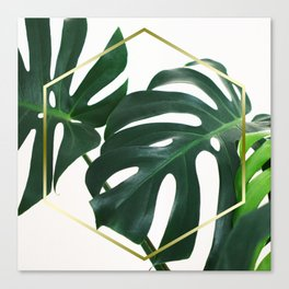 LUXE x Plant Life Canvas Print