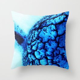 Cold Explosion Throw Pillow