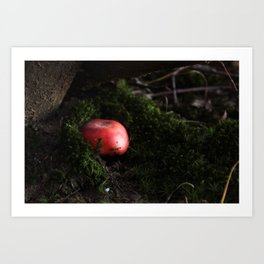 Rosula Art Print