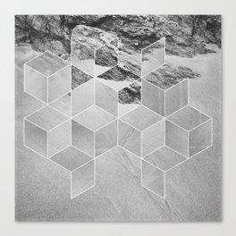 Sandpiper (cubism) Canvas Print
