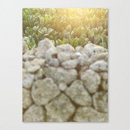 Sunset in Italy, fine art, landscape photo, Sicily photography, Puglia, Apulia, nature lover, love Canvas Print