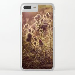 Prickly beauty Clear iPhone Case