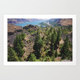 From the Tops of the Trees Art Print