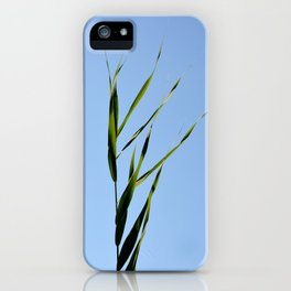 reed closeup iPhone Case