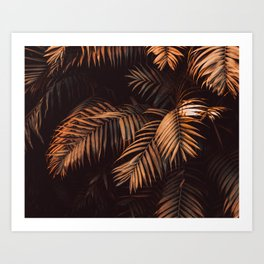 Cinnamon Stick Palms Art Print