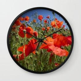 Red Poppy field Wall Clock