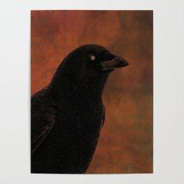 Crow Portrait In Black And Orange Poster