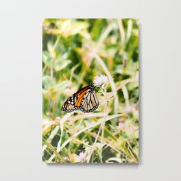 Monarch of the Mountains Metal Print