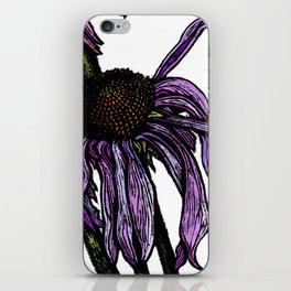 Echinacea - cone flower iPhone Skin