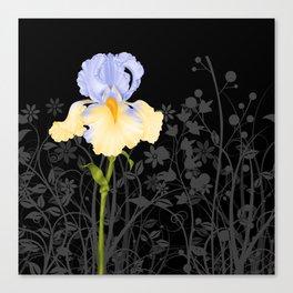 Iris Blue Yellow Canvas Print