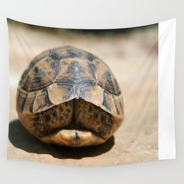 Land Turtle Hiding In Its Shell  Wall Tapestry