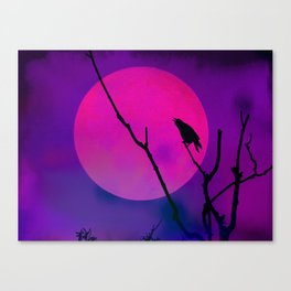The Crow And The Pink Moon Canvas Print